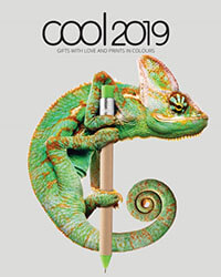 Catalog Cool 2019